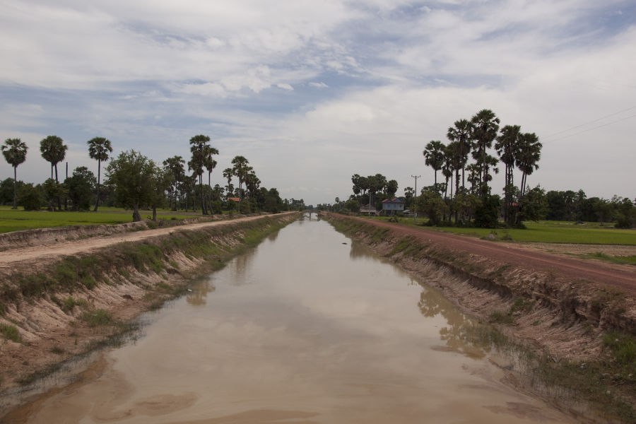 An irrigation canal runs through a Cambodian rice field