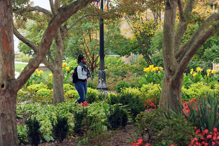 A Kent State student walks through a colorful patch of trees and foliage near the Beyer-Murin Gardens, next to the Risman Plaza, on a warm spring day.