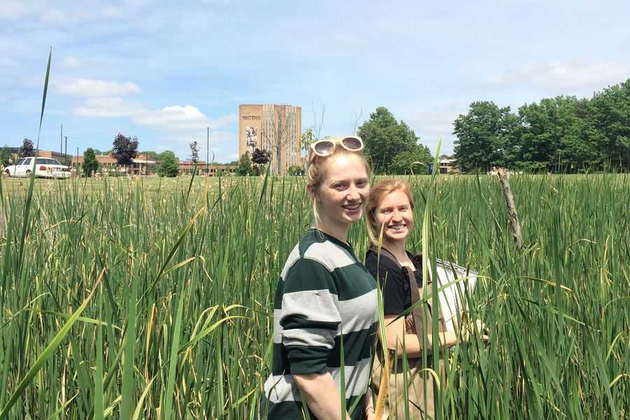 Students perform environmental research in Kent State natural areas