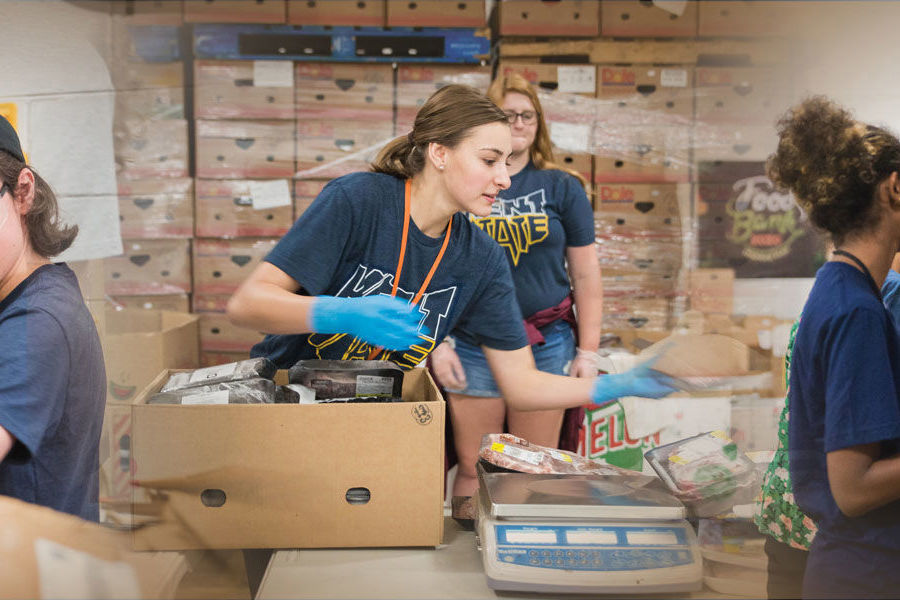Over the summer, Kent State University at Stark freshmen served the community at Stark Parks, The Campus Kitchens Project at the Kent Campus and at Habitat for Humanity Restore in Canton.