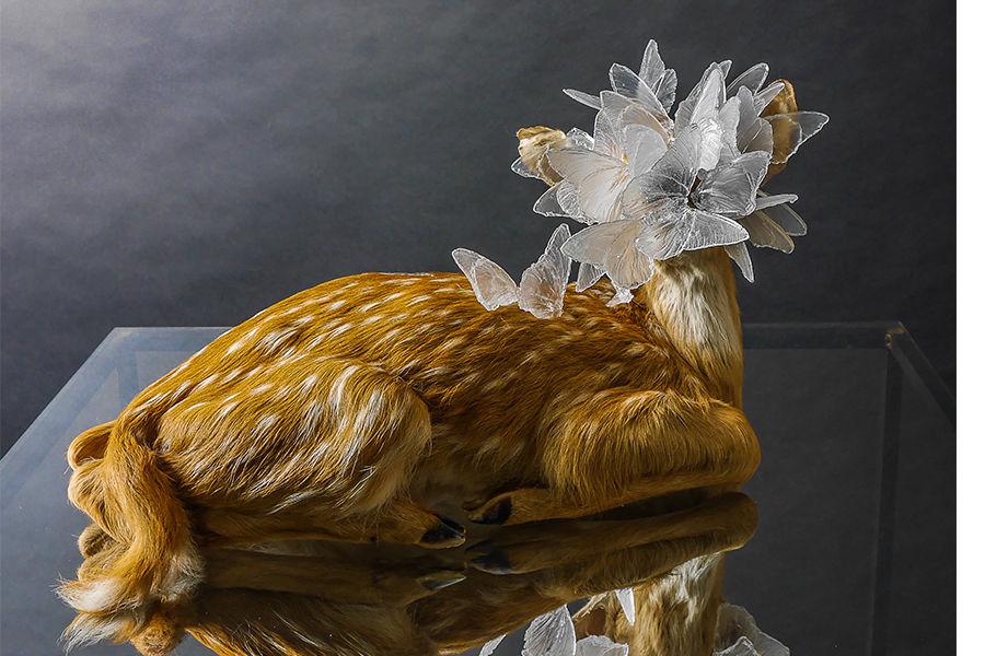 Kent State Glass@50, Alli Hoag