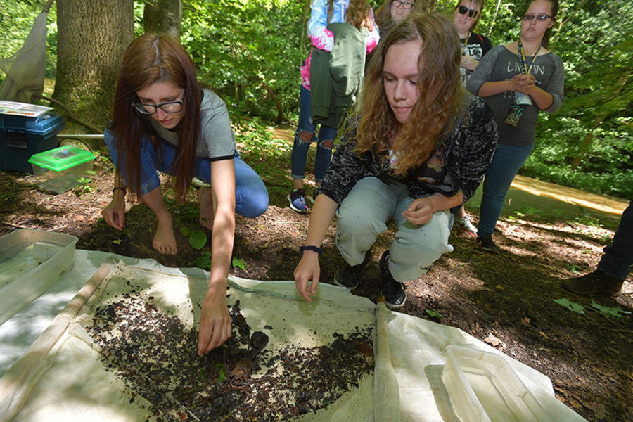 Students taking part in an outdoor exploration program.