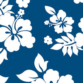 White hibiscus flowers on a blue background