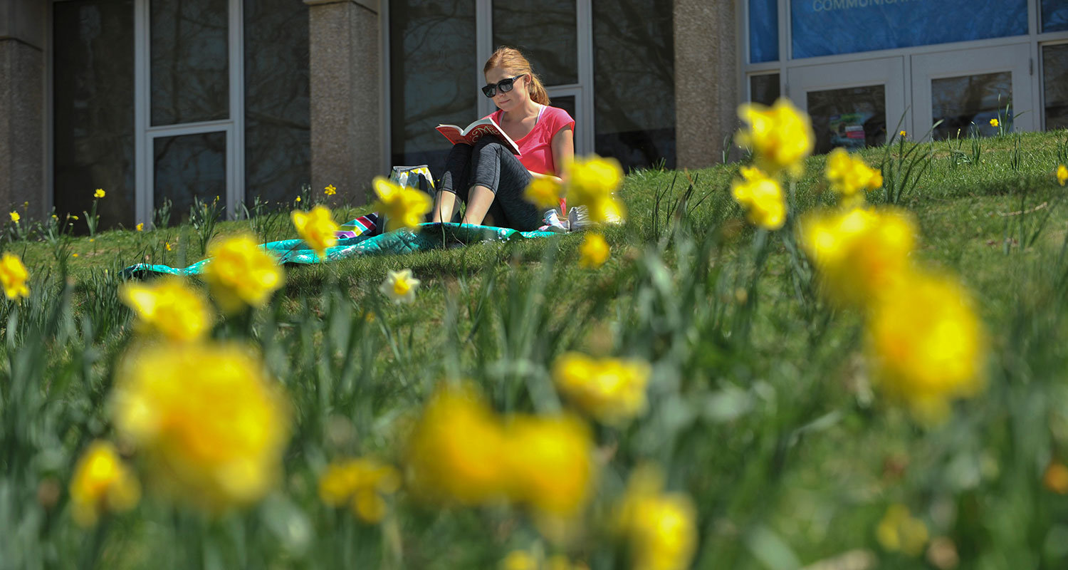 A Kent State student sits among the daffodils.
