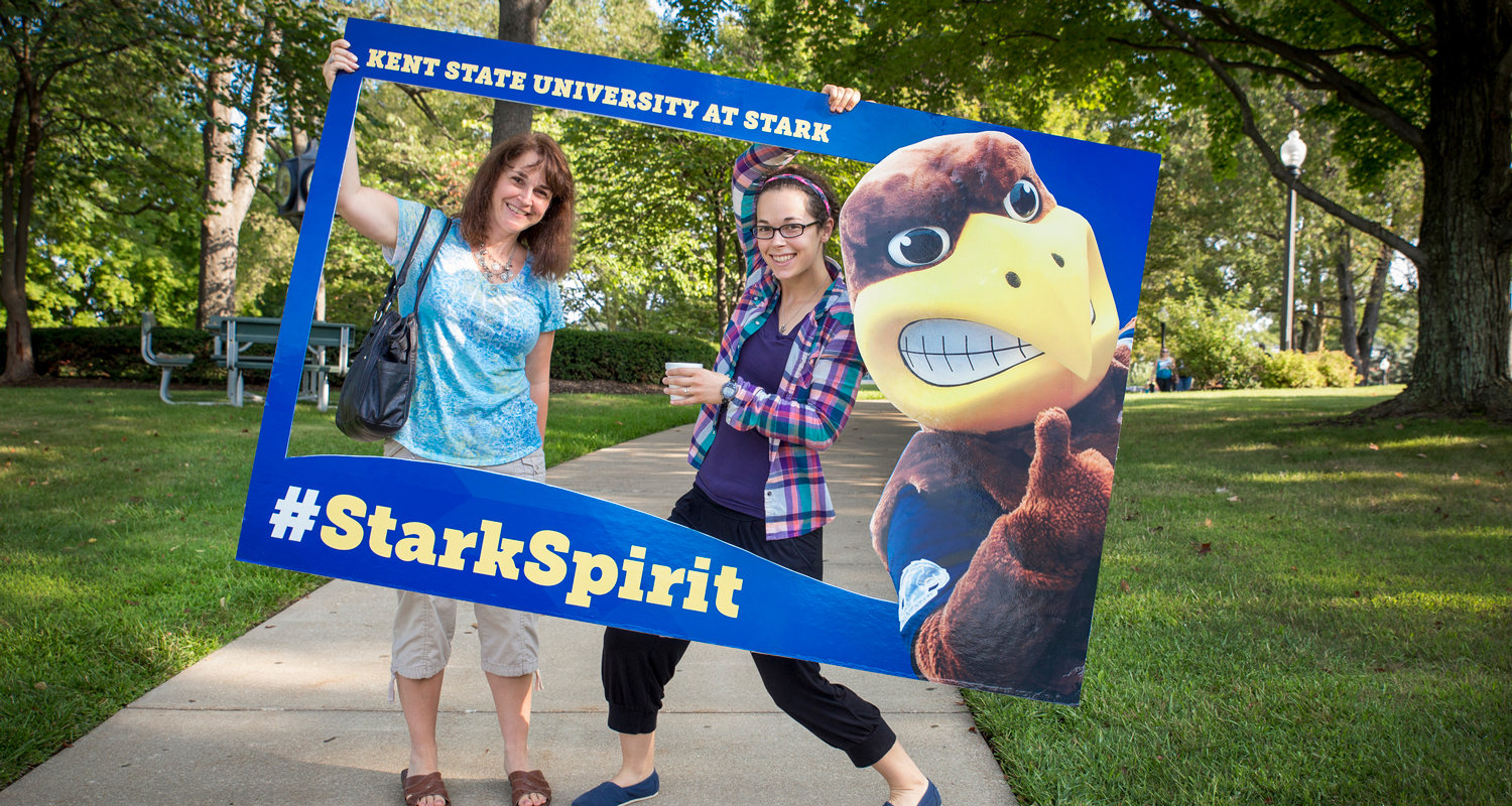 kent state university student guide