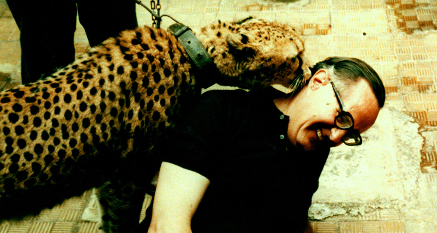Gerald Read interacts with a leopard