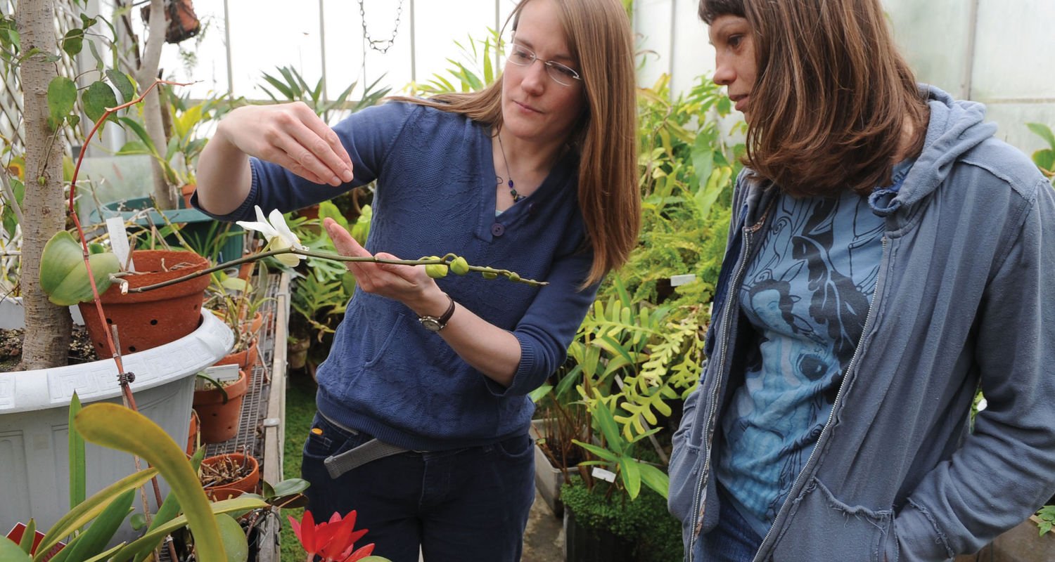 Graduate students in the Biological Sciences program work in the greenhouses behind Cunningham Hall.