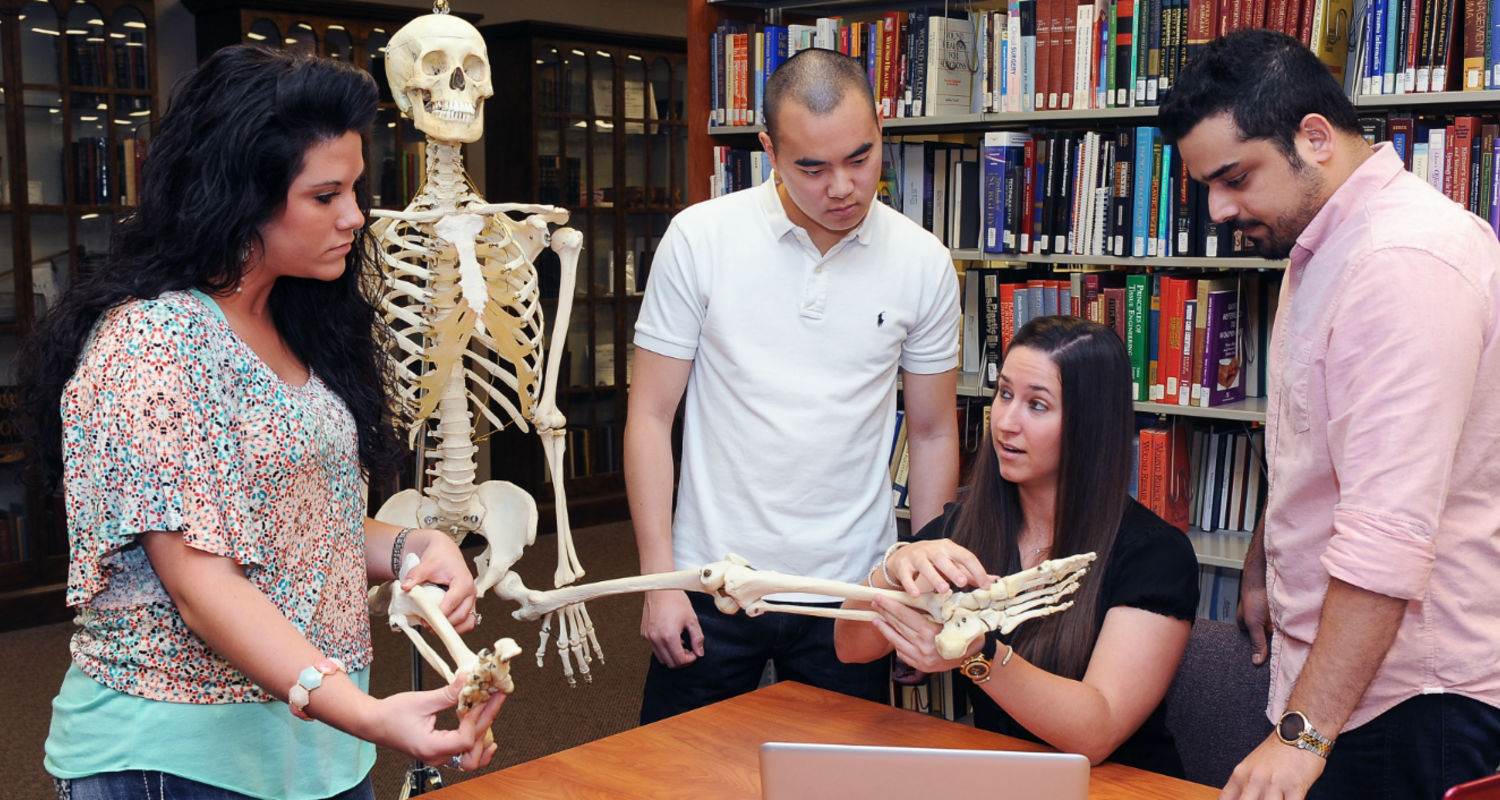 Students at the College of Podiatric Medicine learn about anatomy in the library at the college.