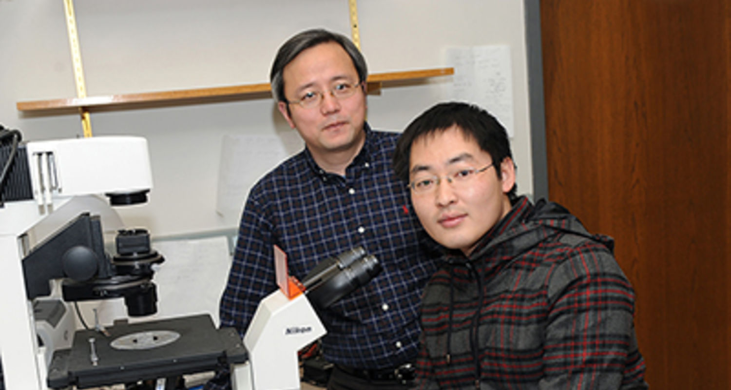 Hanbin Mao, Ph.D., left, in his laboratory with graduate student Yue Li from Kyoto University. Mao collaborates with scientists in Japan on single-molecule studies of a chromosome structure.