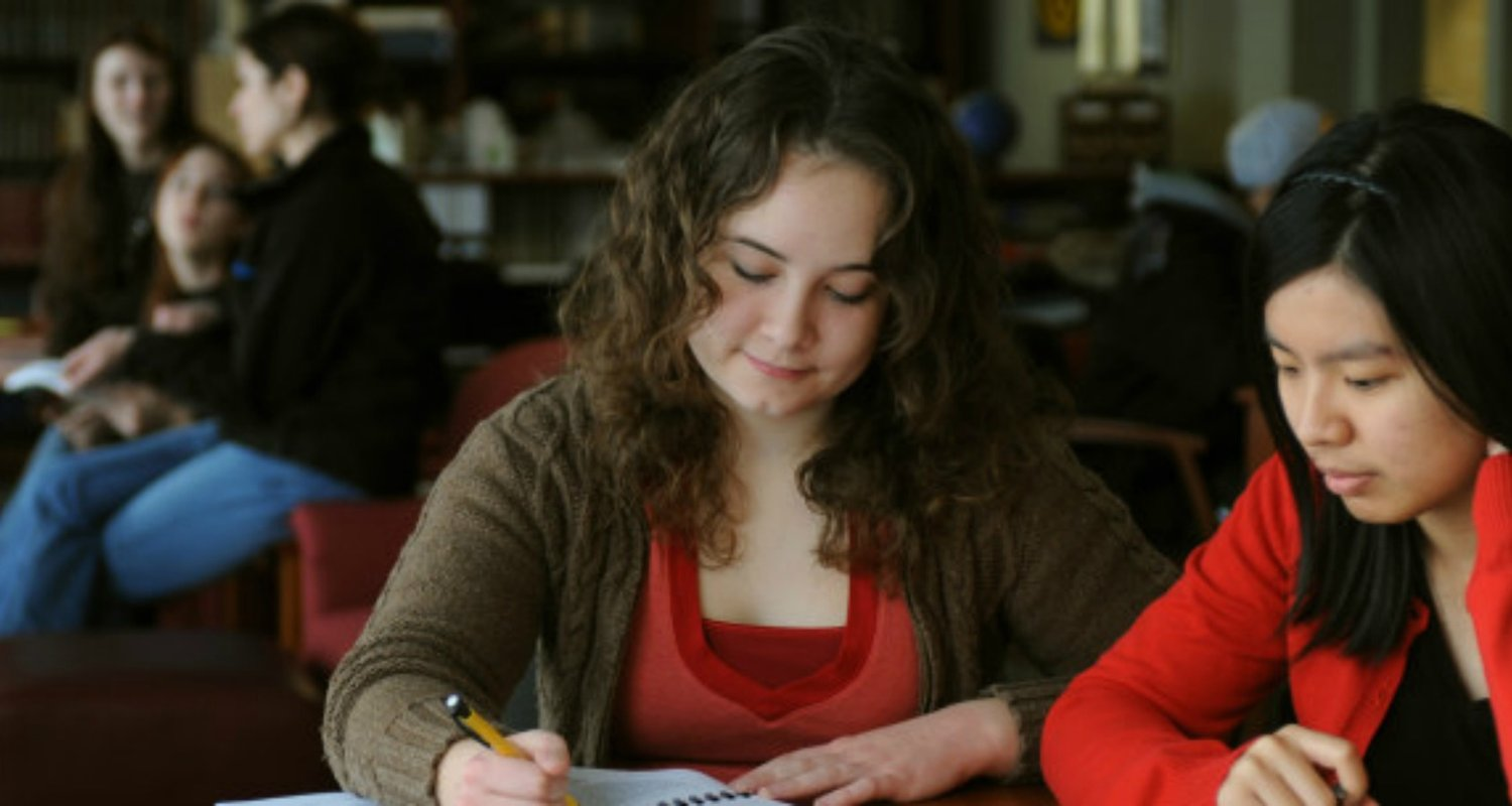 Students study in the Honors College library.