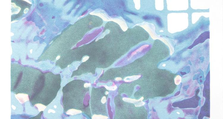 Taryn McMahon, Third Nature print