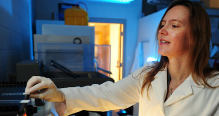 Heather Caldwell, Ph.D., a professor of biological sciences at Kent State University, was awarded a $450,000 grant to study how oxytocin affects the development of the female and male brain.