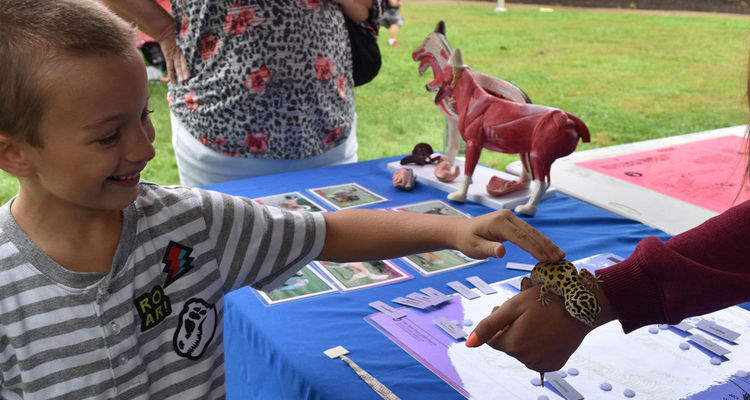 The Kent State University at Salem campus hosted the first-ever STEM University, a free daylong event in September organized by the Columbiana County Educational Service Center for area students in pre-K through fifth grade.