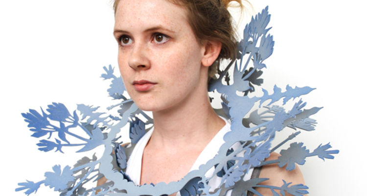 Rachel Smith, Chicory and Stiff Gentian Ruff, 2016