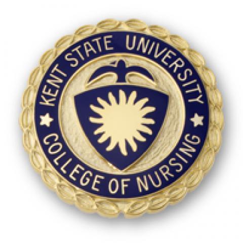 Kent State University College of Nursing Pin
