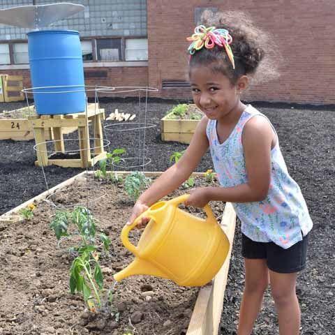 Volunteer at the Community Garden Work Day!