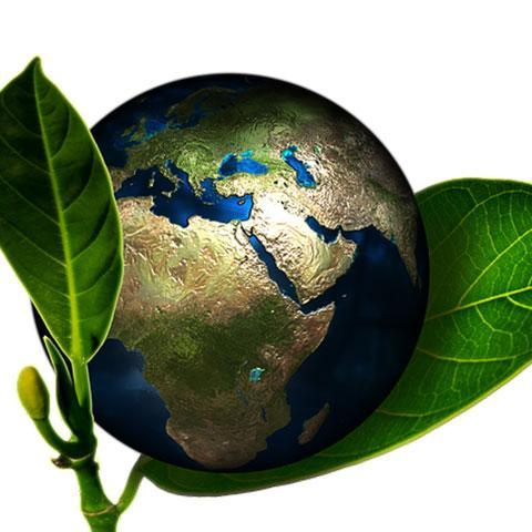 KSU Environmental Club Fall 2021 Virtual Meetings