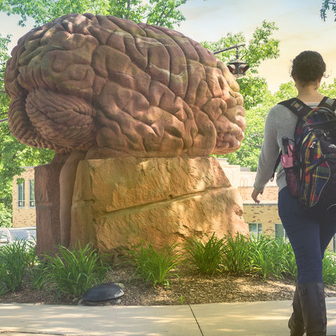 Kent State University's Mental Health Efforts Gain National Attention