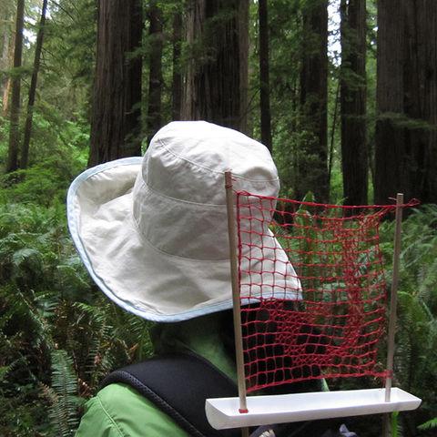 Nami Yamamoto Fog Catcher2