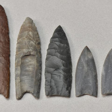 Pictured is a collection of Clovis point replicas and casts in the archaeology lab at Kent State University.