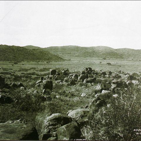 Grassland in Magersfontein (near Kimberley, South Africa), 1900