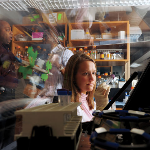A student works in a science lab in Williams Hall.