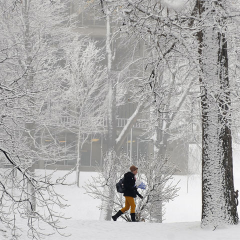 Winter Scene at Kent State