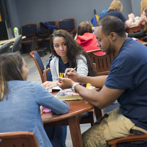 Students working on a group project at the East Liverpool Campus
