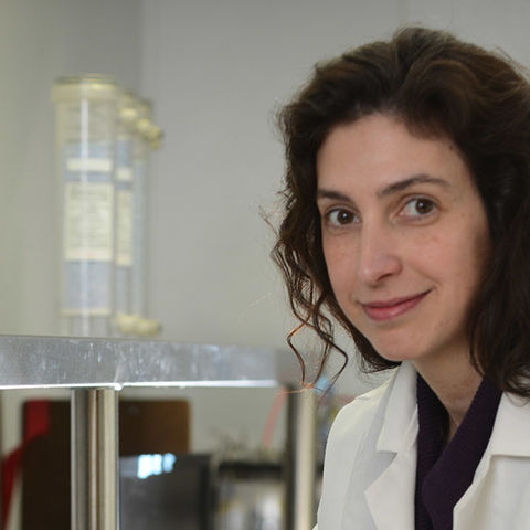 Associate Professor of Biological Sciences Colleen Novak works in her lab.
