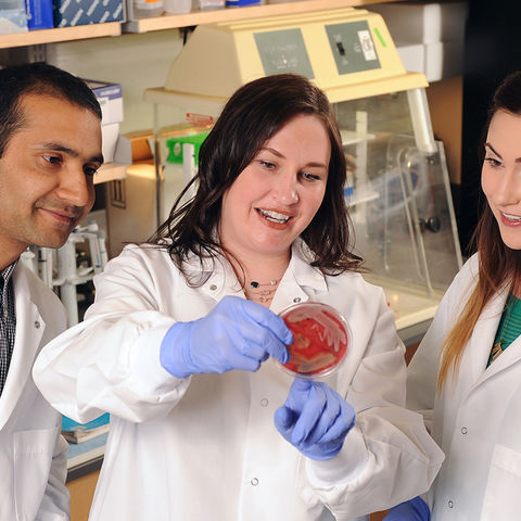 Kent State Associate Professor Tara Smith (center) reviews test results with students in a laboratory in the university's Centennial Research Park. Smith has been selected as Kent State's Scholar of the Month.