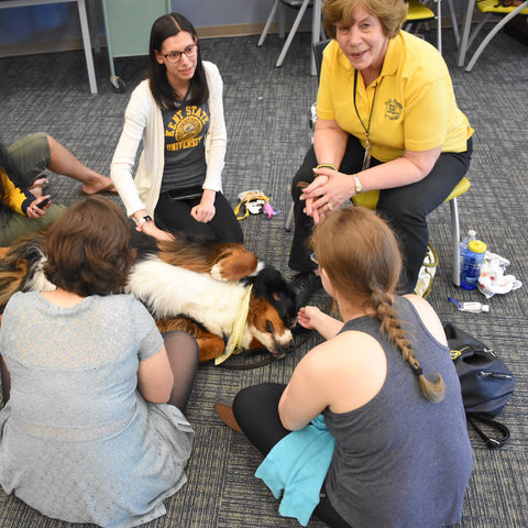 Students De-stress with Dogs on Campus Pet Therapy Program.