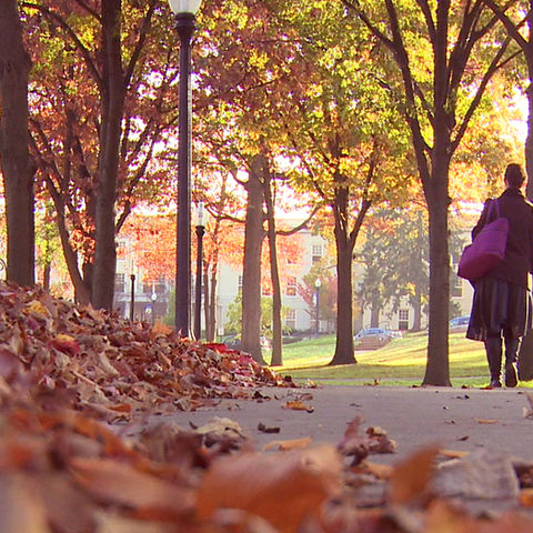 View the fall at Kent State video.