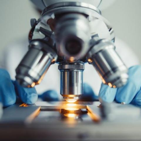 Laboratory research using a microscope.