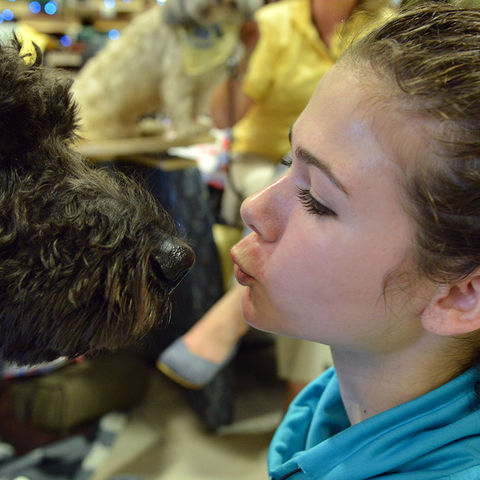 A Kent State student gives a kiss to one of the therapy dogs during the Stress-Free Zone event in the library.