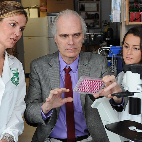 Gary Koski, Ph.D., associate professor in Kent State's Department of Biological Sciences, works with students in the lab. Dr. Koski was honored with a Distinguished Teaching Award for demonstrating exceptional teaching in the classroom.