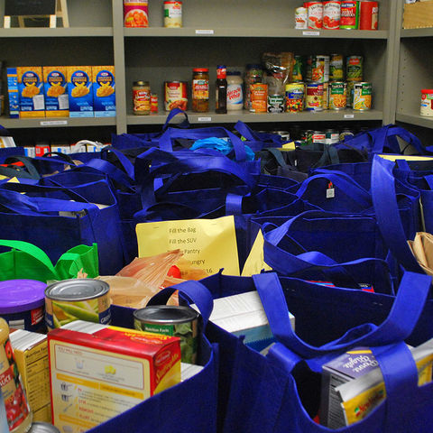 Squirrel Away Food for the Women's Center Pantry collected more than 1,200 pounds of donated food.