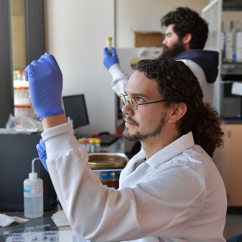 A student examines a sample in the lab