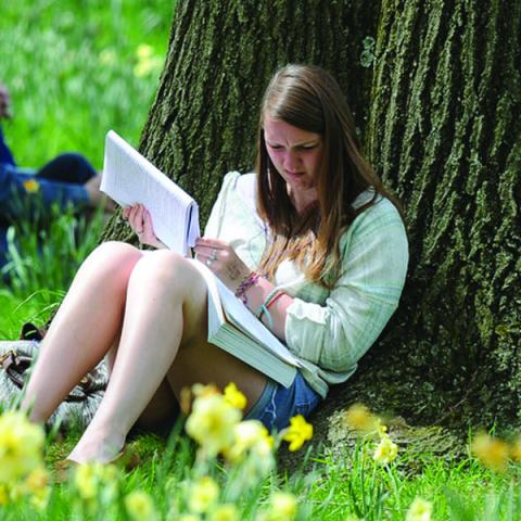 A student studies outside on a nice sunny day