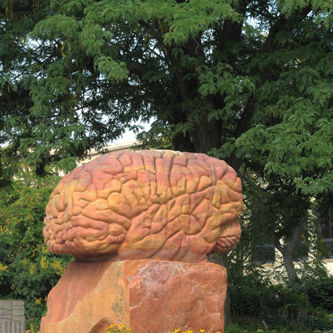 The Brain, part of the Behind the Brain plaza near Merrill Hall