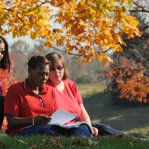A group of students sit outside and look over a paper on a fall day