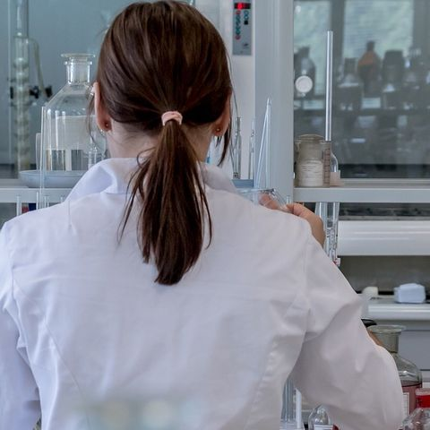 A young woman works in a laboratory (stock photo)