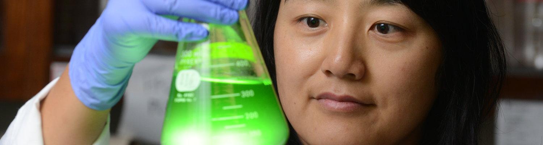 Dr. Jen Mou in lab