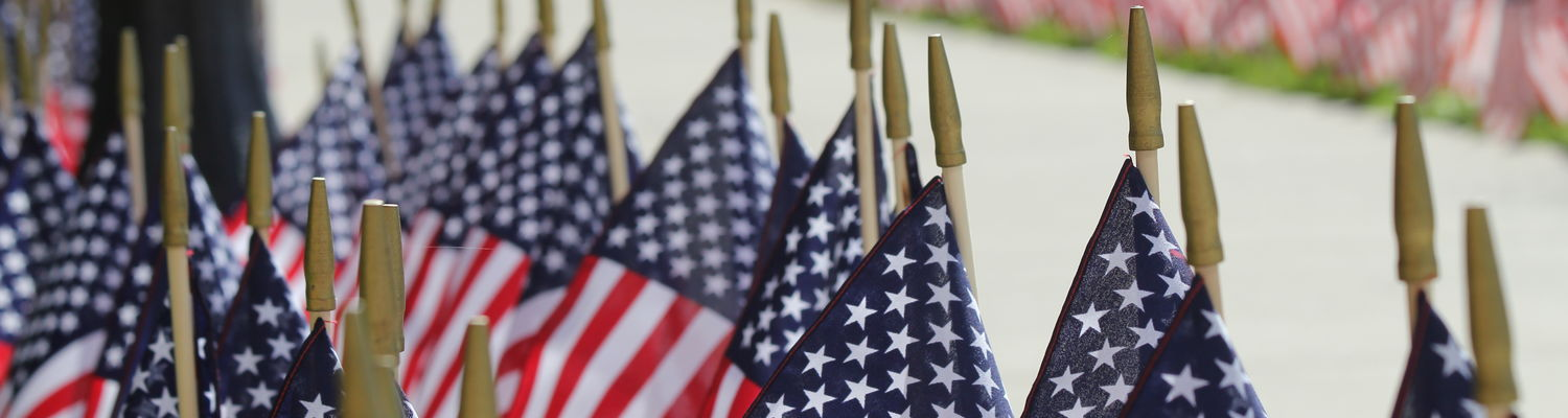 American flags line the campus as part of the SVA's Field of Honor