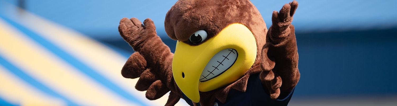 Flash mascot running on field