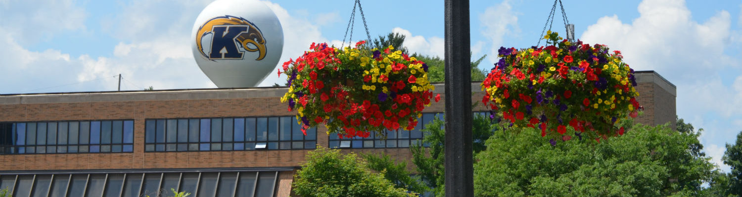 Flowers hang from a lamp post in front of the Business Administration Building on a sunny day