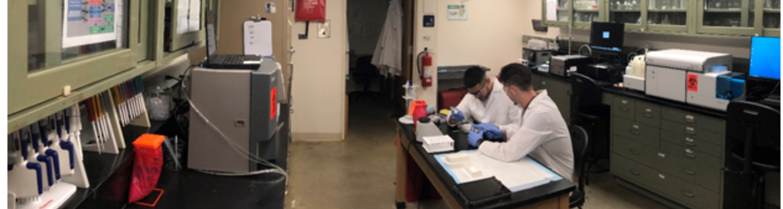 Exercise Biochemistry and Immunology Laboratory