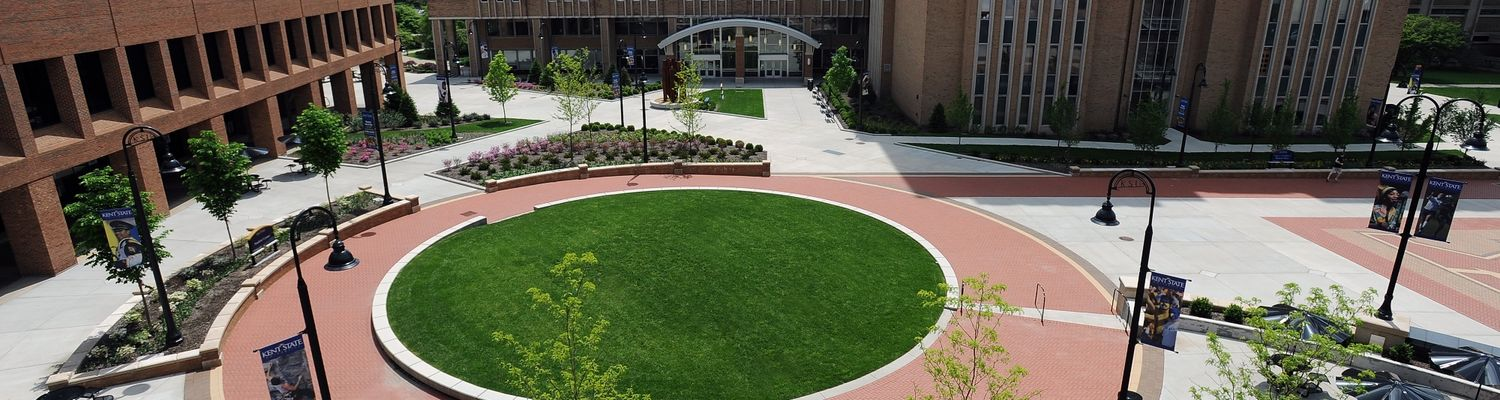Aerial view of the green dot at Risman Plaza on a bright, sunny day