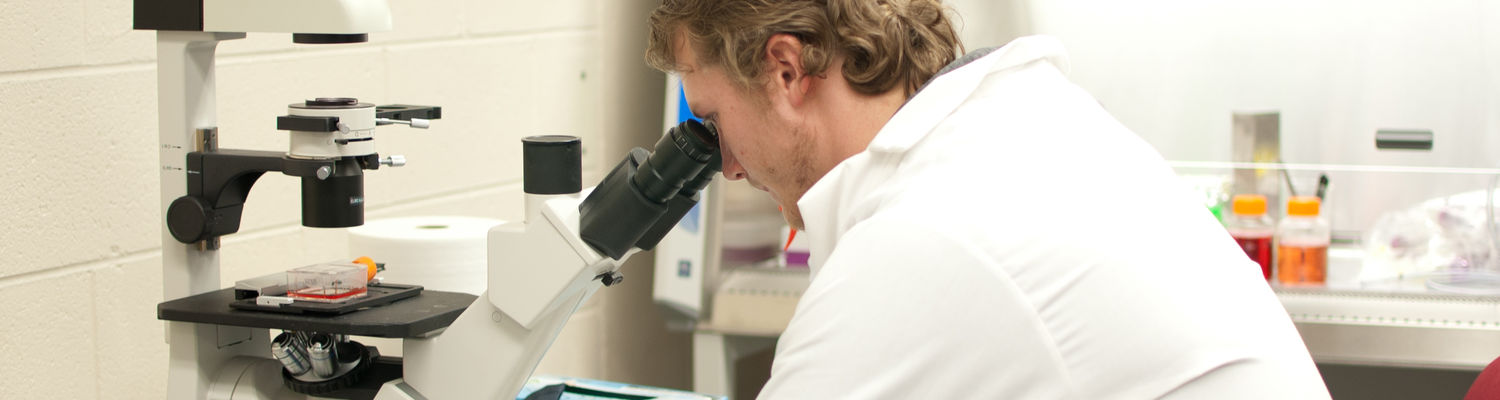 An undergraduate student uses a microscope in a laboratory.