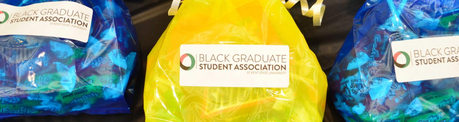 BGSA Candy Bags from GSO 2019