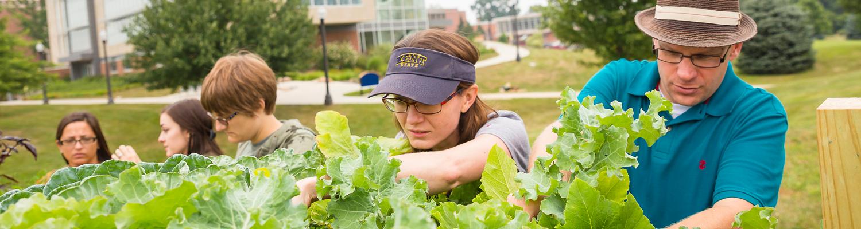 Environmental Studies Faculty at Kent State Stark
